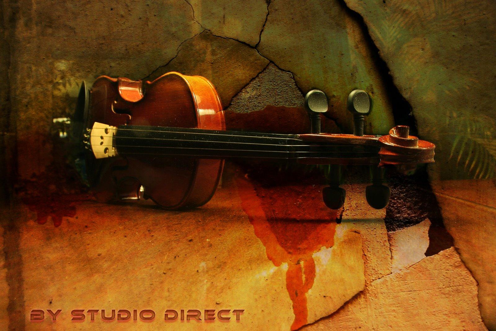 Geige auf Stein